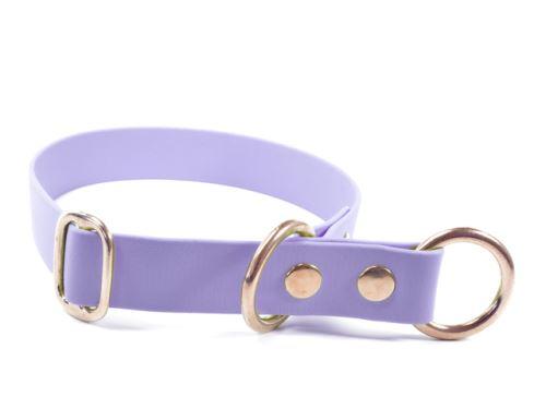 Biothane_half_choke_collar_solid_brass_pastel_purple_small_web