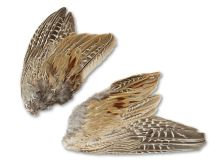 Bažantí křídla 2 ks