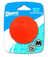 Chuckit! Ball fetch
